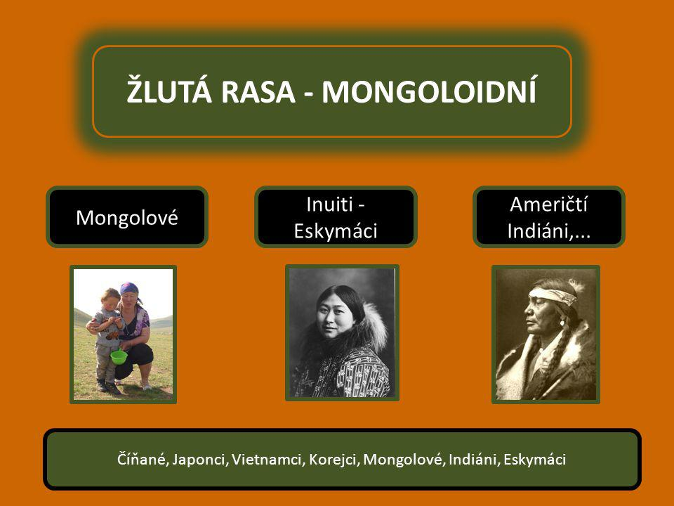 ŽLUTÁ RASA - MONGOLOIDNÍ Inuiti - Eskymáci Mongolové Američtí Indiáni,...