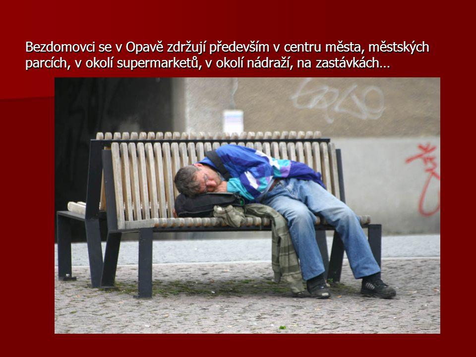 Bezdomovci se v Opavě zdržují především v centru města, městských parcích, v okolí supermarketů, v okolí nádraží, na zastávkách…