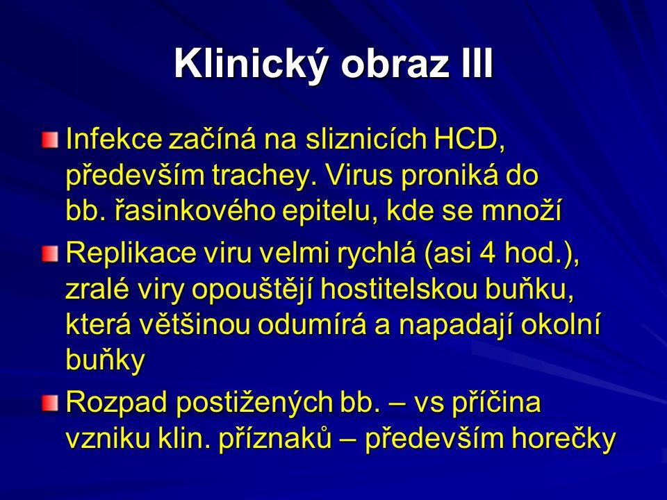 Klinický obraz III Infekce začíná na sliznicích HCD, především trachey. Virus proniká do bb. řasinkového epitelu, kde se množí Replikace viru velmi ry