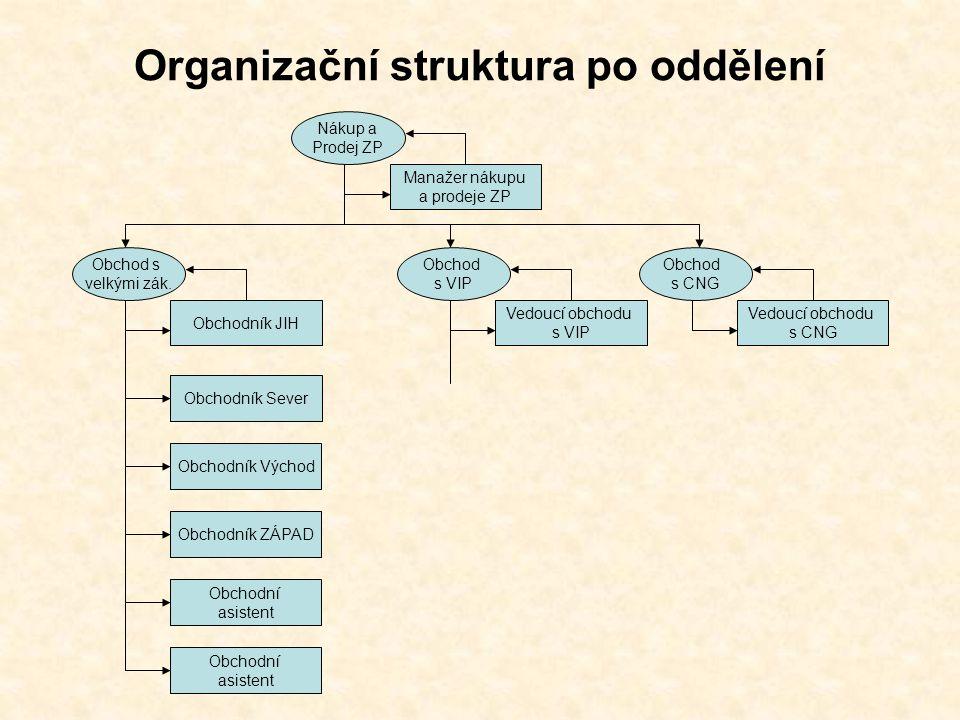Organizační struktura po oddělení Manažer nákupu a prodeje ZP Nákup a Prodej ZP Vedoucí obchodu s VIP Obchod s VIP Vedoucí obchodu s CNG Obchod s CNG Obchodník JIH Obchod s velkými zák.