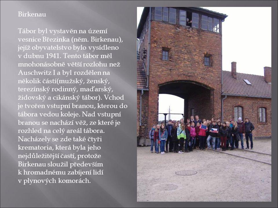 Birkenau Tábor byl vystavěn na území vesnice Březinka (něm. Birkenau), jejíž obyvatelstvo bylo vysídleno v dubnu 1941. Tento tábor měl mnohonásobně vě