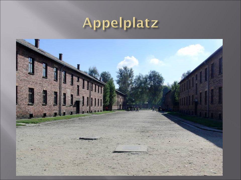  Auschwitz patřil k táborům s poměrně vysokým počtem uprchlých vězňů.