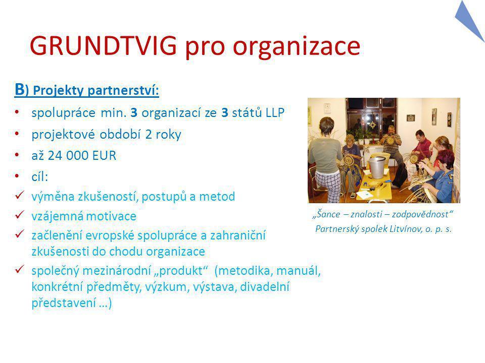 GRUNDTVIG pro organizace B ) Projekty partnerství: spolupráce min.
