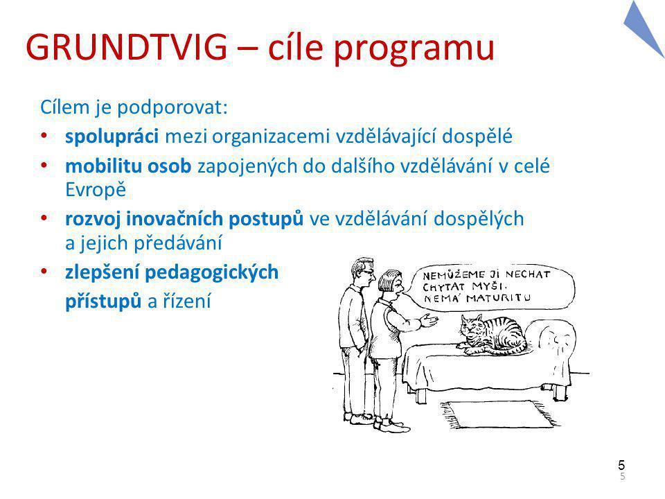 5 5 GRUNDTVIG – cíle programu Cílem je podporovat: spolupráci mezi organizacemi vzdělávající dospělé mobilitu osob zapojených do dalšího vzdělávání v celé Evropě rozvoj inovačních postupů ve vzdělávání dospělých a jejich předávání zlepšení pedagogických přístupů a řízení
