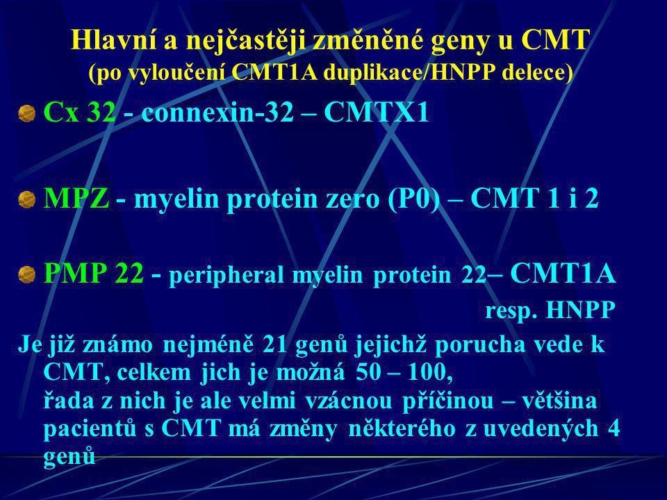 Hlavní a nejčastěji změněné geny u CMT (po vyloučení CMT1A duplikace/HNPP delece) Cx 32 - connexin-32 – CMTX1 MPZ - myelin protein zero (P0) – CMT 1 i