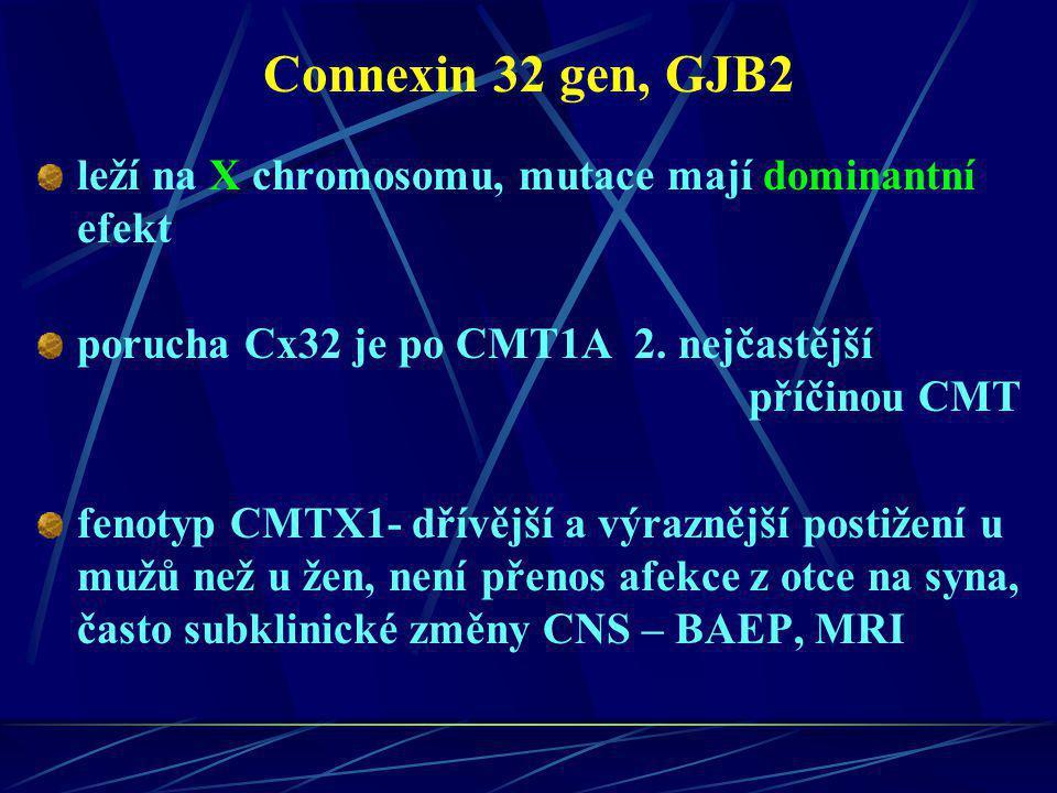 Connexin 32 gen, GJB2 leží na X chromosomu, mutace mají dominantní efekt porucha Cx32 je po CMT1A 2. nejčastější příčinou CMT fenotyp CMTX1- dřívější