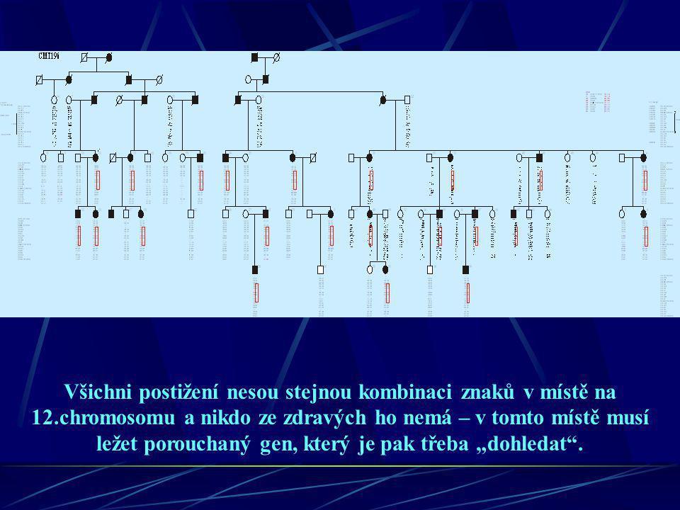 Všichni postižení nesou stejnou kombinaci znaků v místě na 12.chromosomu a nikdo ze zdravých ho nemá – v tomto místě musí ležet porouchaný gen, který