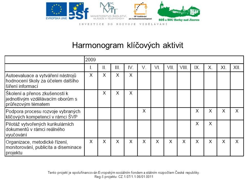 Harmonogram klíčových aktivit komunikace projektového týmu komunikace se ZO komunikace s dalšími pracovníky zapojenými do projektu (odborní pracovníci