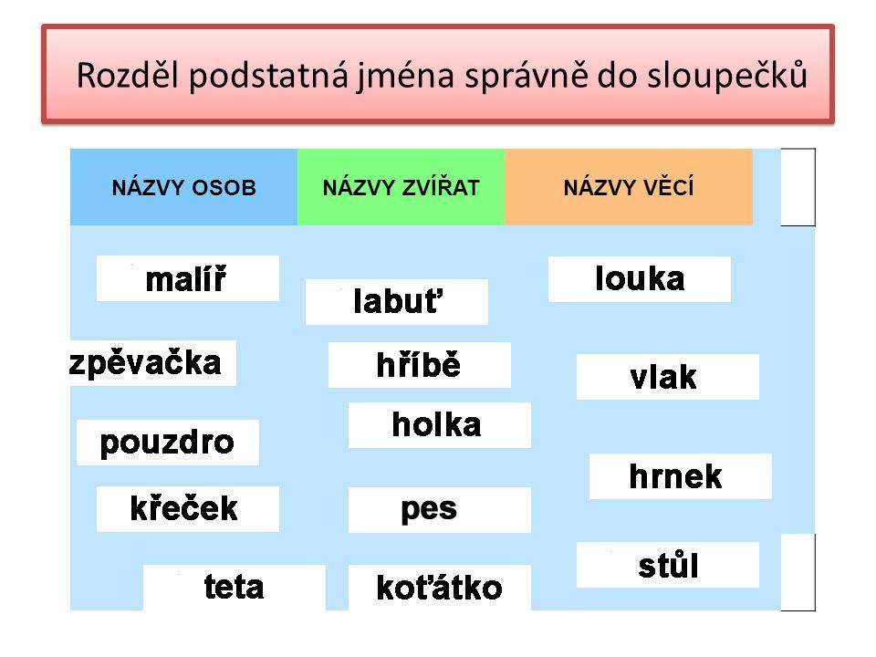 NÁZVY OSOBNÁZVY ZVÍŘATNÁZVY VĚCÍ Rozděl podstatná jména správně do sloupečků