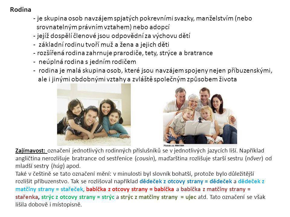 Rodina - je skupina osob navzájem spjatých pokrevními svazky, manželstvím (nebo srovnatelným právním vztahem) nebo adopcí - jejíž dospělí členové jsou odpovědní za výchovu dětí - základní rodinu tvoří muž a žena a jejich děti - rozšířená rodina zahrnuje prarodiče, tety, strýce a bratrance - neúplná rodina s jedním rodičem - rodina je malá skupina osob, které jsou navzájem spojeny nejen příbuzenskými, ale i jinými obdobnými vztahy a zvláště společným způsobem života Zajímavost: označení jednotlivých rodinných příslušníků se v jednotlivých jazycích liší.