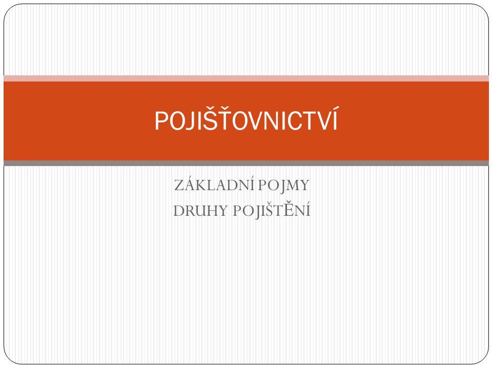 Úkol Zpracujte referáty o vybraných pojišťovnách působících na českém trhu.