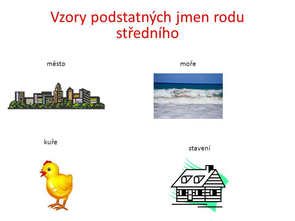 Vzory podstatných jmen rodu středního městomoře kuře stavení