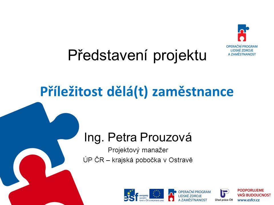 Představení projektu Regionální individuální projekt Financování z prostředků ESF prostřednictvím OP LZZ Oblast podpory 2.1: Posílení APZ Rozpočet: 36,6 mil.