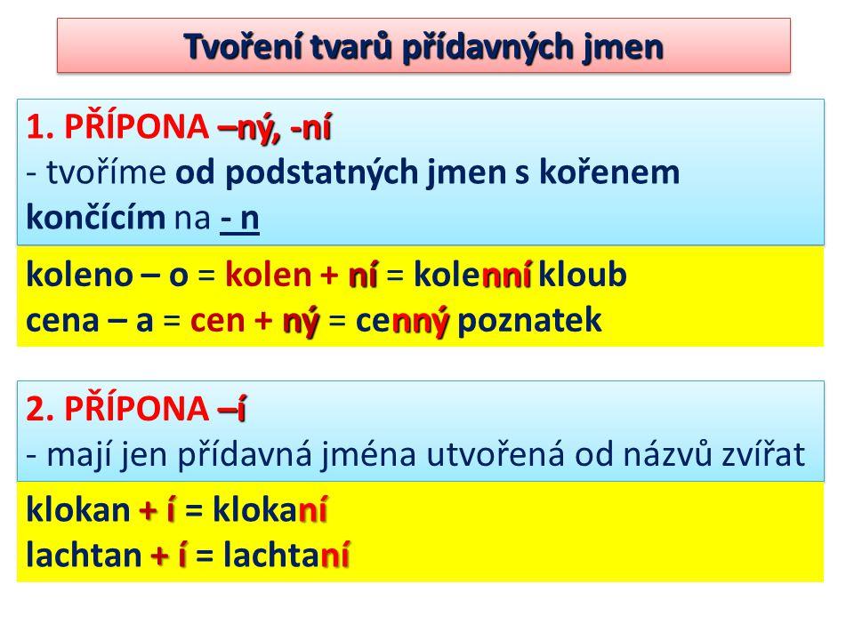 Tvoření tvarů přídavných jmen –ný, -ní 1. PŘÍPONA –ný, -ní - tvoříme od podstatných jmen s kořenem končícím na - n –ný, -ní 1. PŘÍPONA –ný, -ní - tvoř