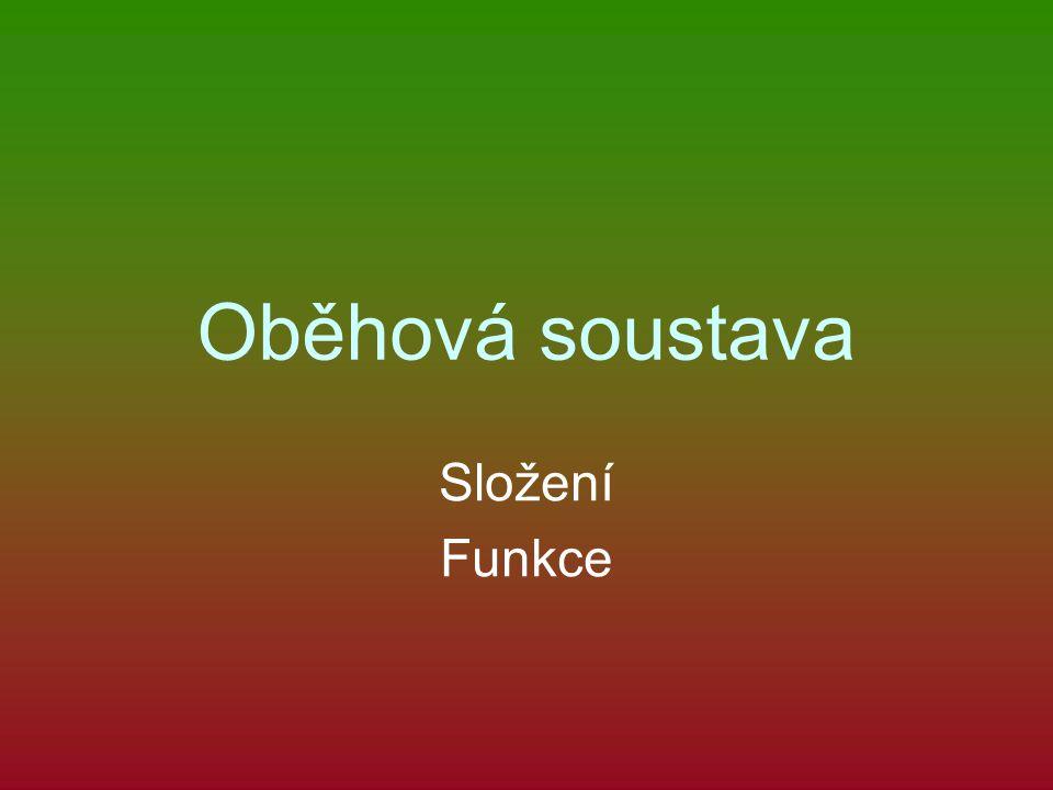 Oběhová soustava Složení Funkce