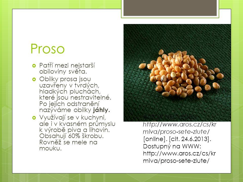 Kukuřice  Se zpracovává na mouku, krupici a kukuřičný škrob (Maizena).