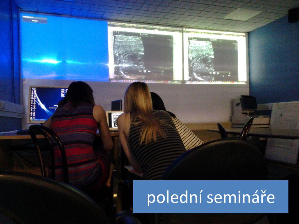 polední semináře