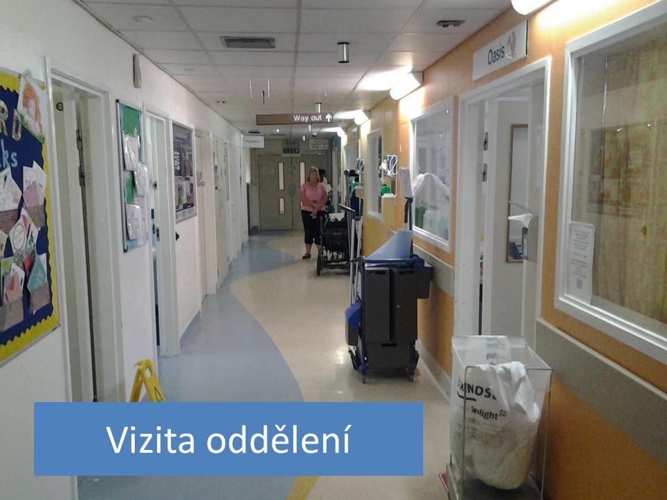 Vizita oddělení