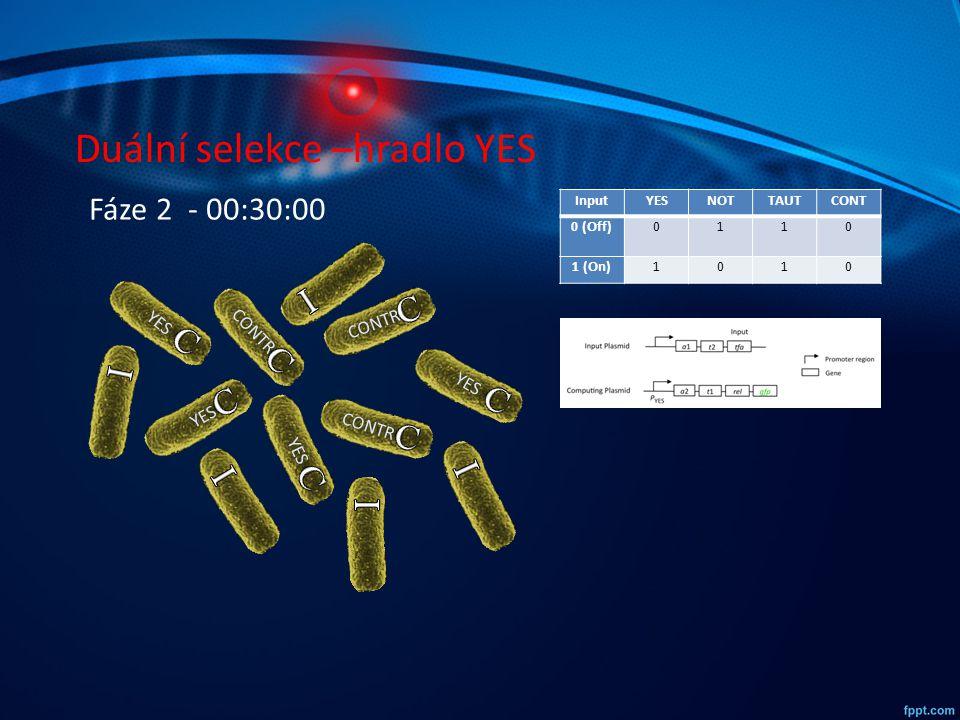 Duální selekce –hradlo YES InputYESNOTTAUTCONT 0 (Off)0110 1 (On)1010 YES CONTR YES CONTR YES CONTR Fáze 2 - 00:30:00