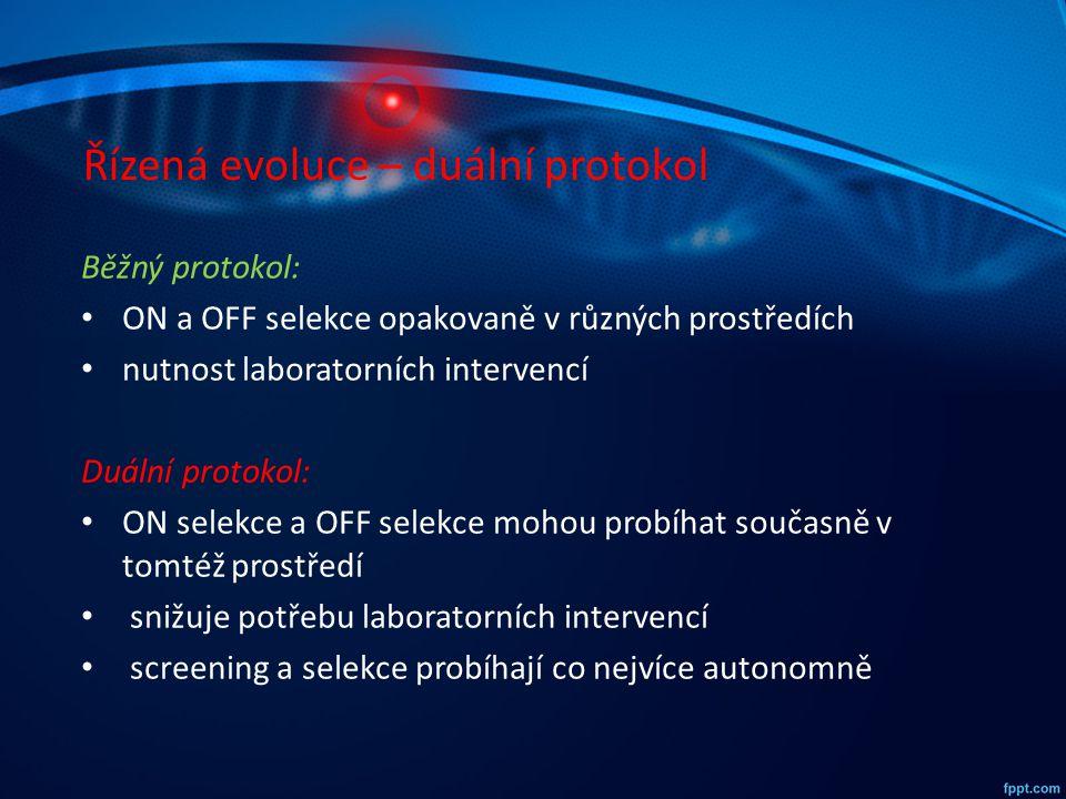 Řízená evoluce – duální protokol Běžný protokol: ON a OFF selekce opakovaně v různých prostředích nutnost laboratorních intervencí Duální protokol: ON
