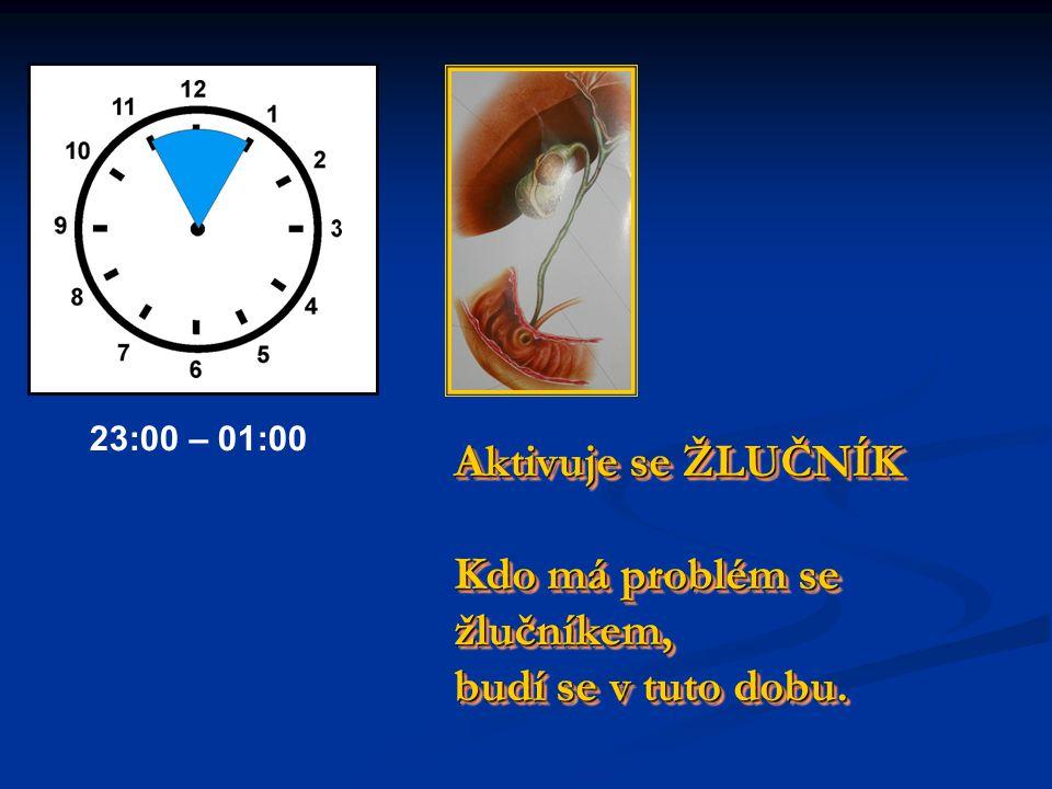 Příprava těla na SPÁNEK Nejíst, nekouřit, neaktivovat tělo. Příprava těla na SPÁNEK Nejíst, nekouřit, neaktivovat tělo. 21:00 – 23:00