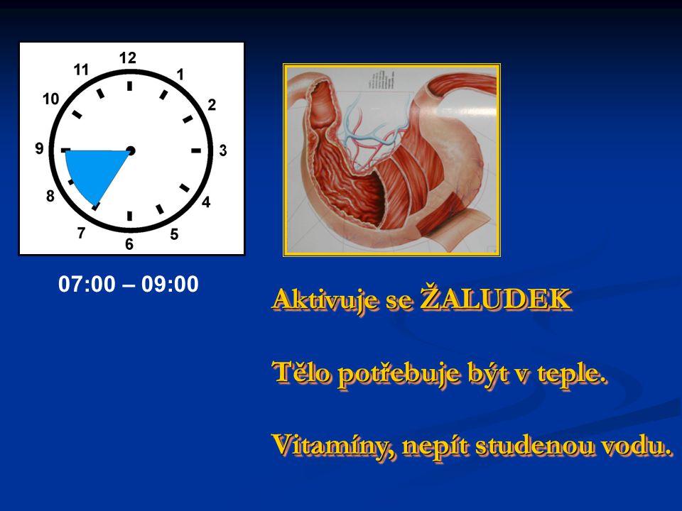 Aktivuje se TLUSTÉ STŘEVO Nemocní se cítí špatně. Hodně čaje ! Aktivuje se TLUSTÉ STŘEVO Nemocní se cítí špatně. Hodně čaje ! 05:00 – 07:00