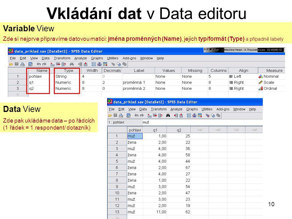 10 Vkládání dat v Data editoru Variable View Zde si nejprve připravíme datovou matici: jména proměnných (Name), jejich typ/formát (Type) a případně la