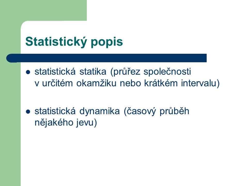 Statistický popis statistická statika (průřez společnosti v určitém okamžiku nebo krátkém intervalu) statistická dynamika (časový průběh nějakého jevu)