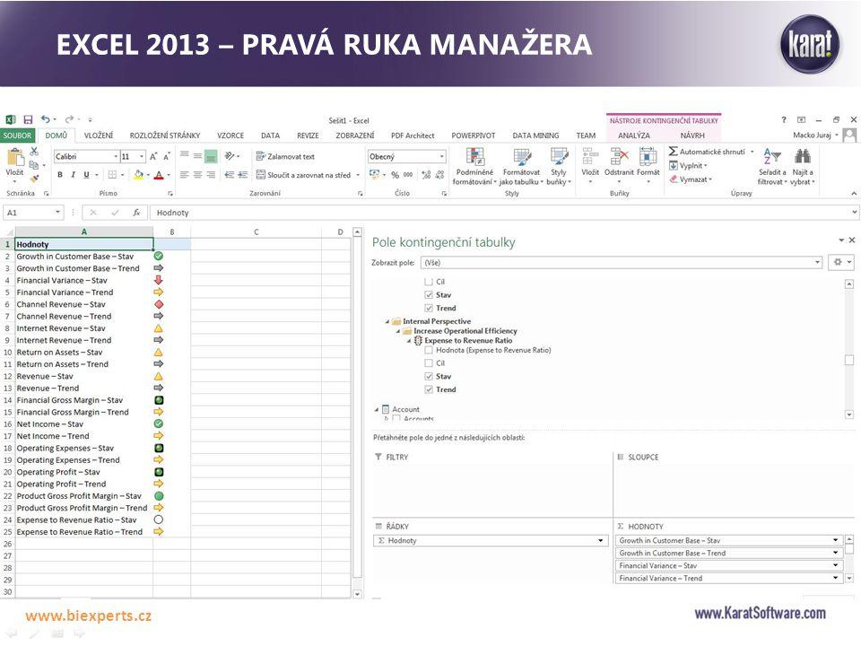 EXCEL 2013 – PRAVÁ RUKA MANAŽERA www.biexperts.cz