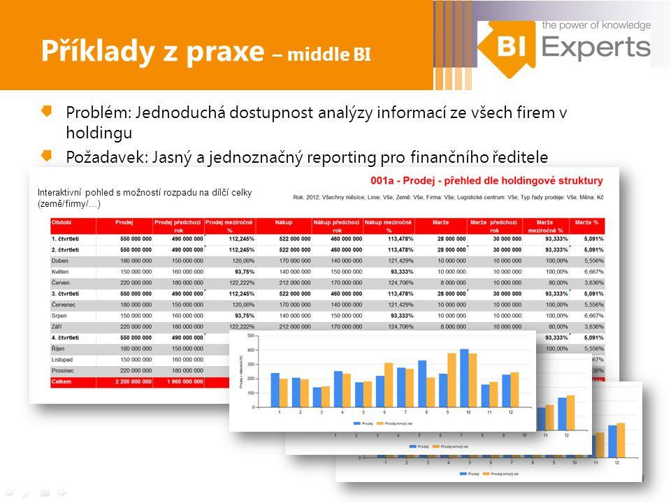 Problém: Jednoduchá dostupnost analýzy informací ze všech firem v holdingu Požadavek: Jasný a jednoznačný reporting pro finančního ředitele Příklady z