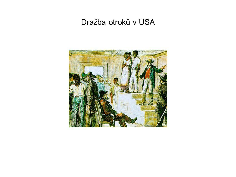Dražba otroků v USA