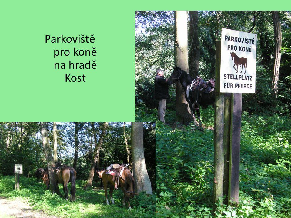 Parkoviště pro koně na hradě Kost