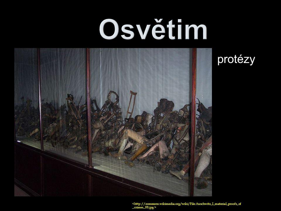 protézy