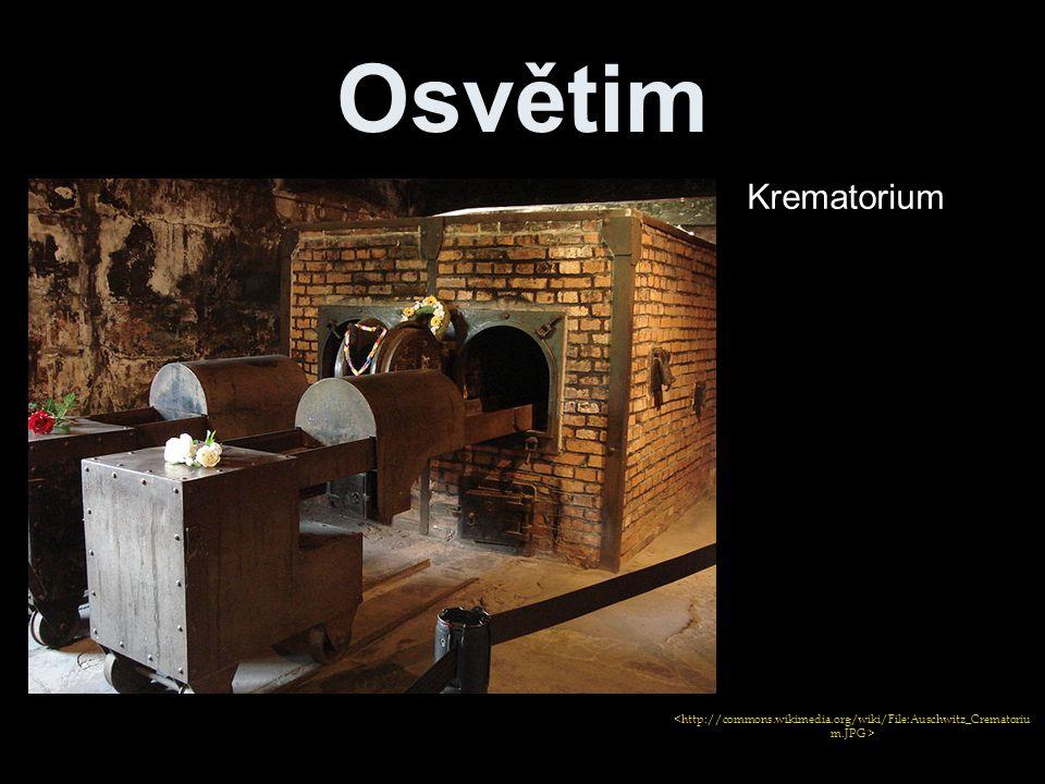 Osvětim Krematorium
