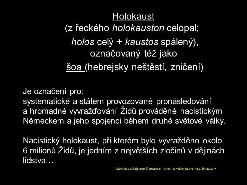 Holokaust (z řeckého holokauston celopal; holos celý + kaustos spálený), označovaný též jako šoa (hebrejsky neštěstí, zničení) Je označení pro: system