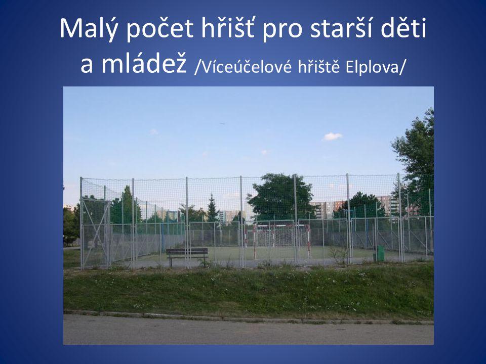Malý počet hřišť pro starší děti a mládež /Víceúčelové hřiště Elplova/