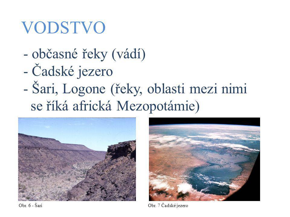 VODSTVO - občasné řeky (vádí) - Čadské jezero - Šari, Logone (řeky, oblasti mezi nimi se říká africká Mezopotámie) Obr.
