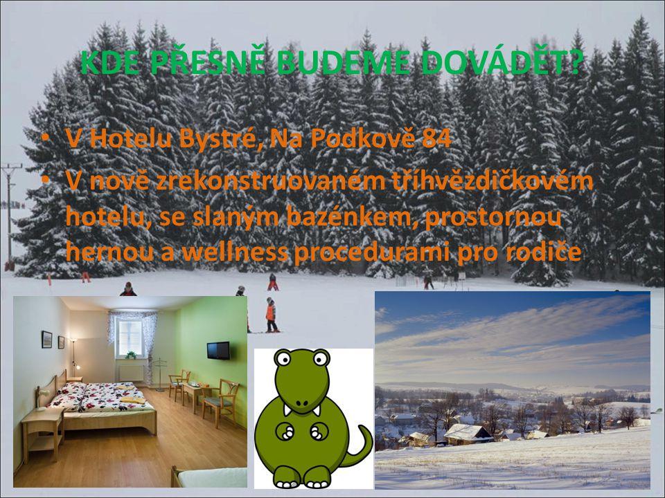 Připravili jsme pro Vás sportovní rodinný týden v malebné zimní přírodě nedaleko Brna.