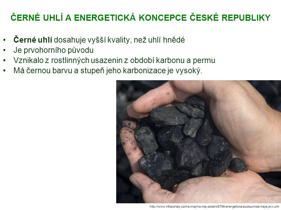 ČERNÉ UHLÍ A ENERGETICKÁ KONCEPCE ČESKÉ REPUBLIKY Černé uhlí dosahuje vyšší kvality, než uhlí hnědé Je prvohorního původu Vznikalo z rostlinných usazenin z období karbonu a permu Má černou barvu a stupeň jeho karbonizace je vysoký.
