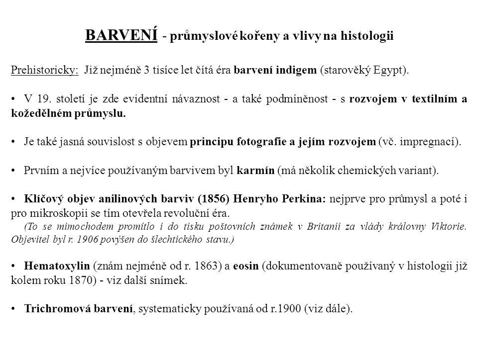 Prehistoricky: Již nejméně 3 tisíce let čítá éra barvení indigem (starověký Egypt).