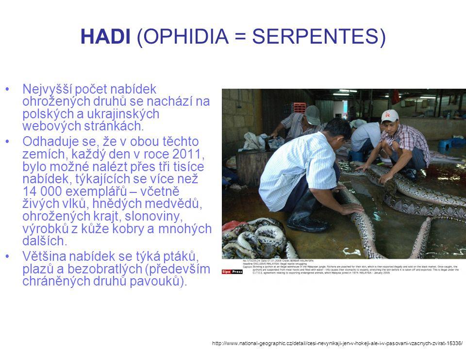 HADI (OPHIDIA = SERPENTES) Nejvyšší počet nabídek ohrožených druhů se nachází na polských a ukrajinských webových stránkách. Odhaduje se, že v obou tě