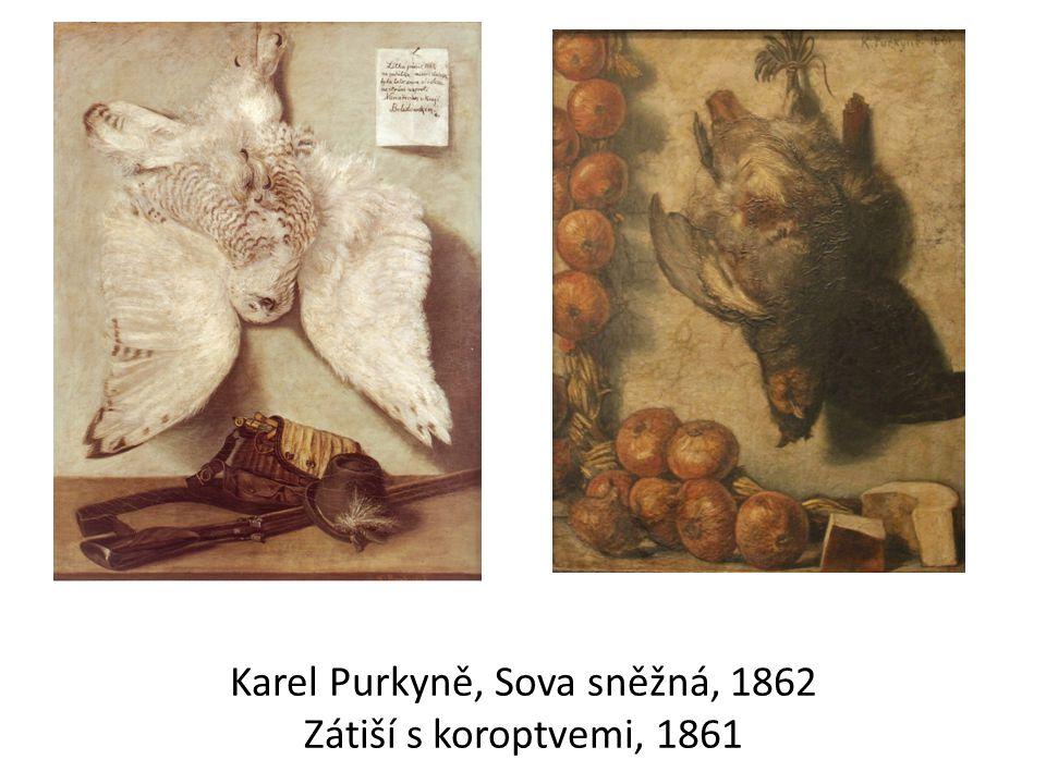 Karel Purkyně, Sova sněžná, 1862 Zátiší s koroptvemi, 1861