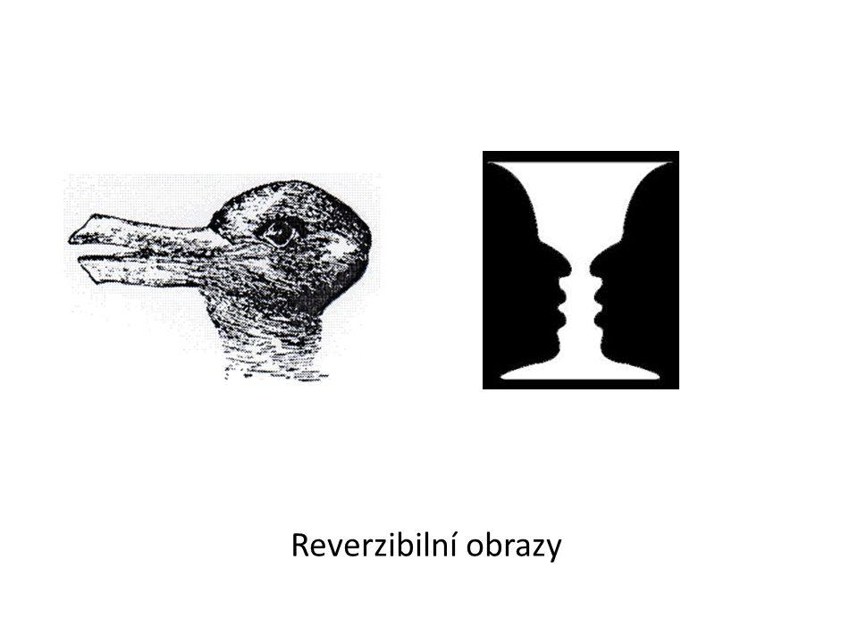 Reverzibilní obrazy