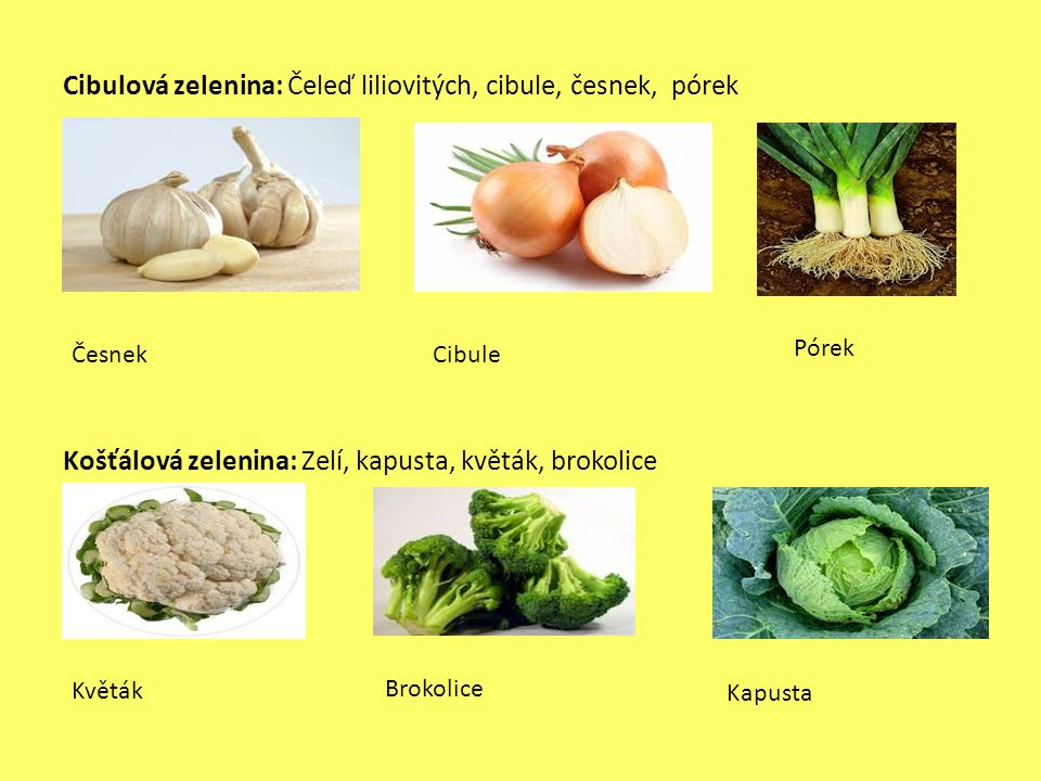 Cibulová zelenina: Čeleď liliovitých, cibule, česnek, pórek Košťálová zelenina: Zelí, kapusta, květák, brokolice ČesnekCibule Pórek Květák Brokolice K