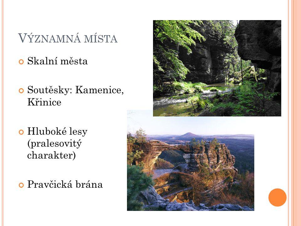 V ÝZNAMNÁ MÍSTA Skalní města Soutěsky: Kamenice, Křinice Hluboké lesy (pralesovitý charakter) Pravčická brána