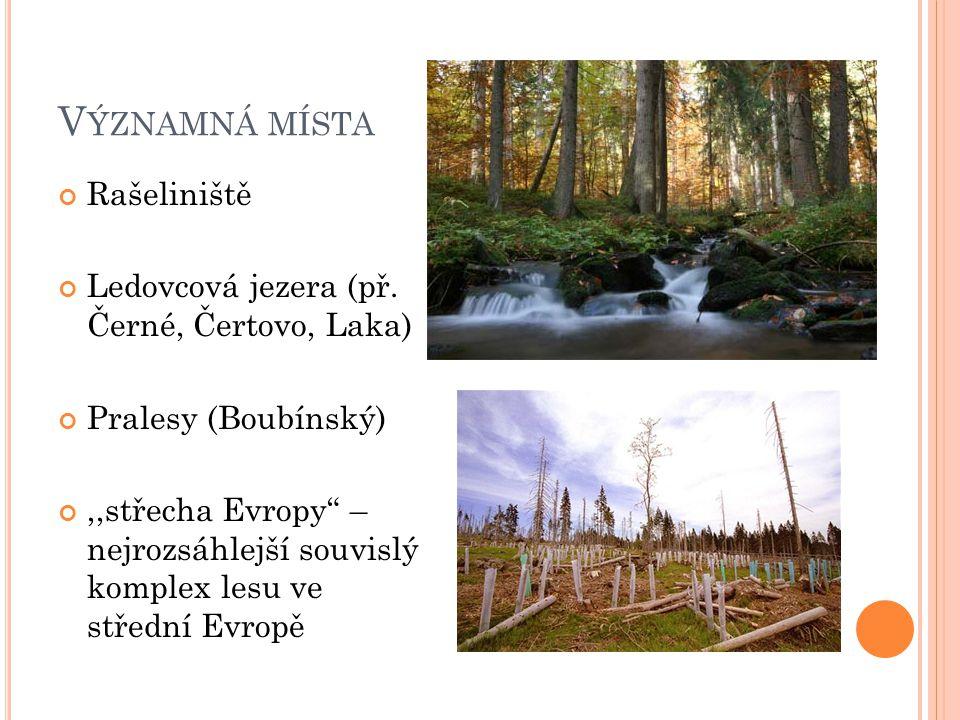 """V ÝZNAMNÁ MÍSTA Rašeliniště Ledovcová jezera (př. Černé, Čertovo, Laka) Pralesy (Boubínský),,střecha Evropy"""" – nejrozsáhlejší souvislý komplex lesu ve"""
