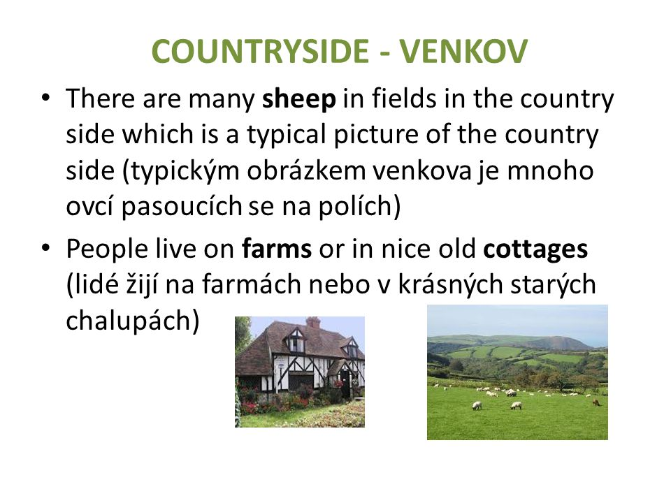 COUNTRYSIDE - VENKOV There are many sheep in fields in the country side which is a typical picture of the country side (typickým obrázkem venkova je mnoho ovcí pasoucích se na polích) People live on farms or in nice old cottages (lidé žijí na farmách nebo v krásných starých chalupách)