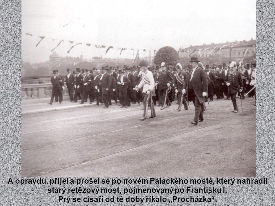 Řetězový most Františka I. z r. 1841, který vedl z Ferdinandovy (Národní) třídy přes Střelecký ostrov na Újezd. Vydržel až do roku 1907 a poté nahraze
