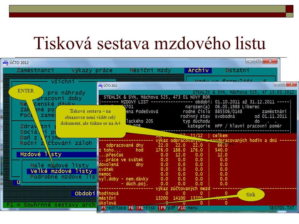 Tisková sestava mzdového listu ENTER Tisková sestava – na obrazovce není vidět celý dokument, ale tiskne se na A4 tisk