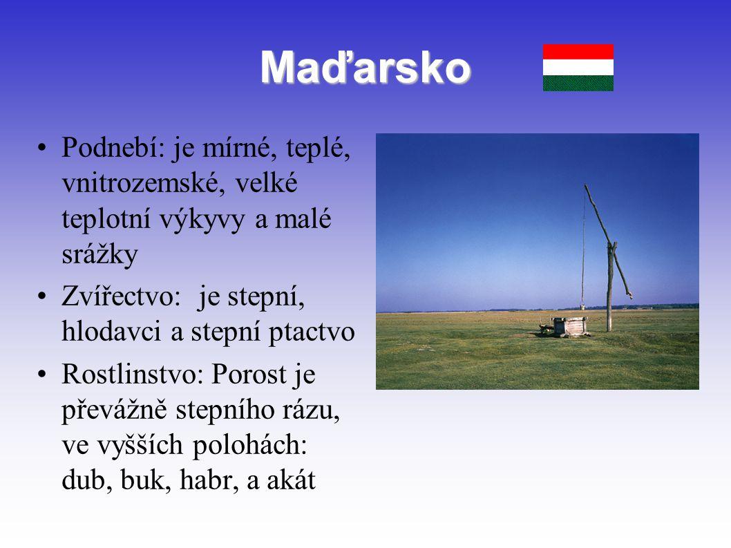 Maďarsko Podnebí: je mírné, teplé, vnitrozemské, velké teplotní výkyvy a malé srážky Zvířectvo: je stepní, hlodavci a stepní ptactvo Rostlinstvo: Poro